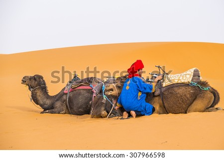 MERZOUGA, MOROCCO, APRIL 13, 2015: Local man in traditional attire and his camels on sand dunes of Erg Chebbi - stock photo