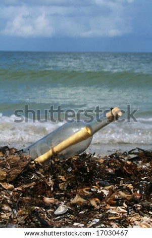 Message in a bottle washed ashore over a pile of seaweed - stock photo