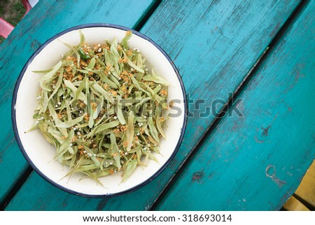 metal bowl of Lime / Linden tree (Tilia) leaves and blossom used as a herbal remedy, domestic medicine still life concept - stock photo