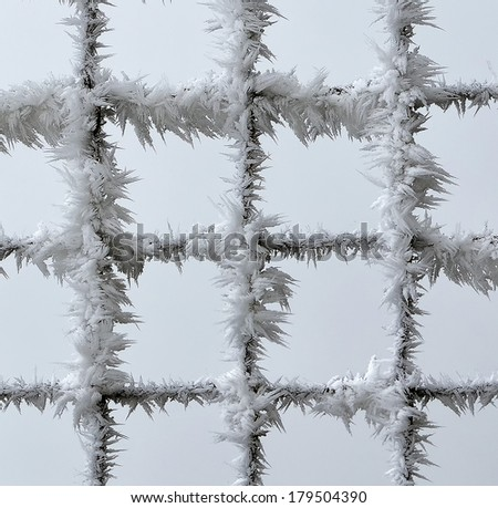 Metal fence covered with frost, white background