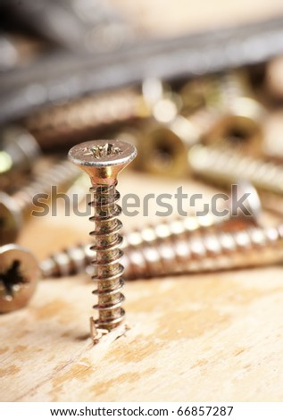 metal screw, driven into wood base, macro shot - stock photo