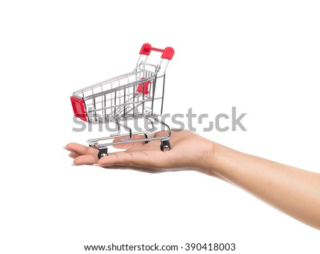 Metal shopping trolleys for shopping in a store Isolated on white background