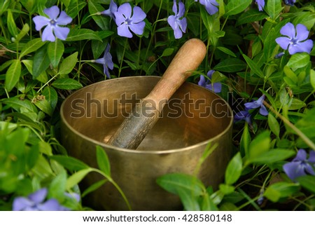 Metal singing bowl among the flowers of cornflower