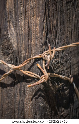 Metal twisted ends of barbed wire fence wrapped together on wooden fence post. - stock photo