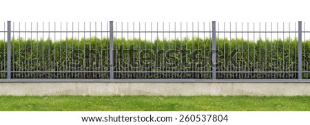 Metal village mass production  long gray fence  isolated panorama collage. Behind the fence is growing evergreen hedge of Thuja tree. - stock photo