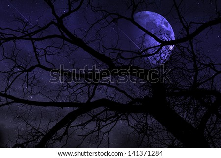 meteoric shower in the night - stock photo