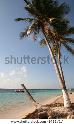 Mexican Beach - stock photo
