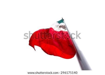 Mexican Flag at Zocalo - stock photo