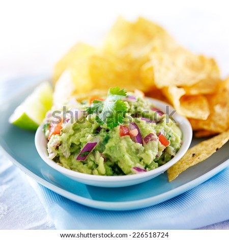 mexican guacamole with tortilla chips on plate - stock photo
