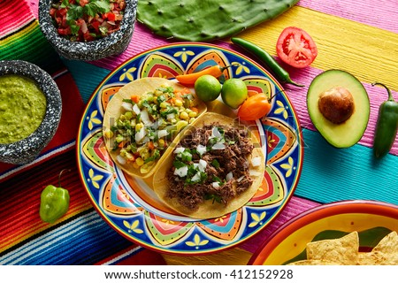 Mexican platillo tacos of barbacoa and vegetarian with sauces and colorful table