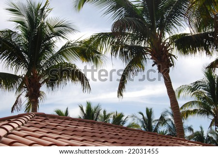 Mexican roof - stock photo