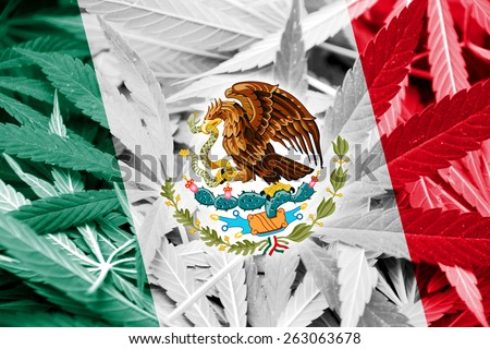 Mexico Flag on cannabis background. Drug policy. Legalization of marijuana - stock photo