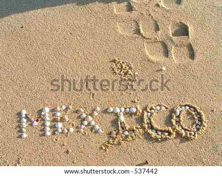 mexico shells - stock photo