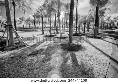Miami. Beautiful city view in infrared. - stock photo