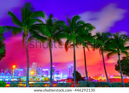 Miami skyline at sunset with palm trees in Florida USA