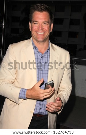 Michael Weatherly at the CBS, Showtime, CW 2013 TCA Summer Stars Party, Beverly Hilton Hotel, Beverly Hills, CA 07-29-13