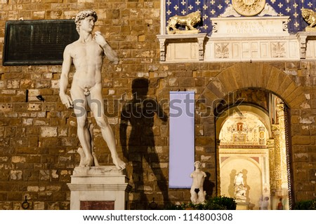 Michelangelo's David Sculpture and its Shadow in the Night, Piazza della Signoria, Florence, Italy - stock photo
