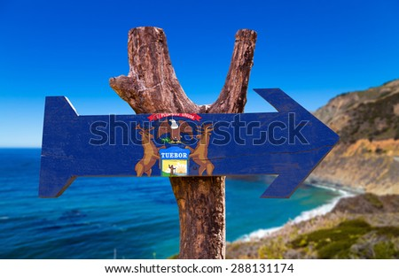 Michigan Flag wooden sign with coastal background - stock photo