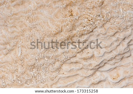 Microbial mat pools close up in  Yellowstone National Park,Wyoming - stock photo