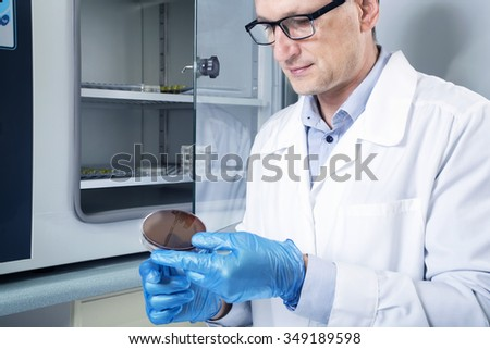 Microbiologist hand cultivating a petri dish whit inoculation loops, beside autoclave for sterilising surgical and other instruments inside.