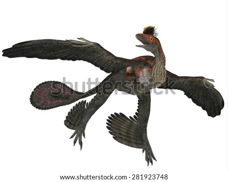 Microraptor Dinosaur Profile - Microraptor was a flying dinosaur reptile and lived in China and Mongolia in the Cretaceous Periods. - stock photo