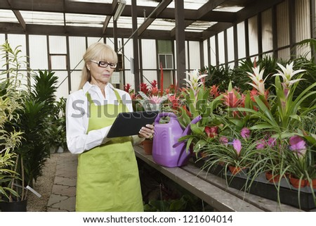 Middle-aged florist using tablet pc in greenhouse - stock photo