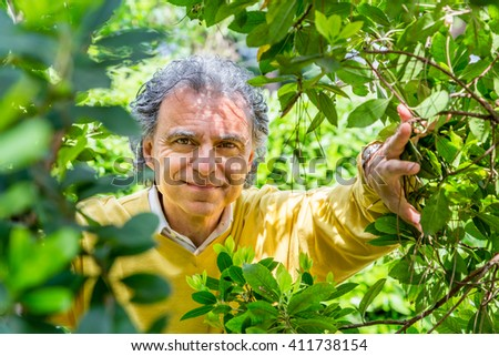 middle-aged man under laburnum in green garden