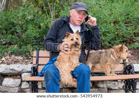 Middle aged man wearing a cap sitting on park bench with his dogs talking on cell phone.