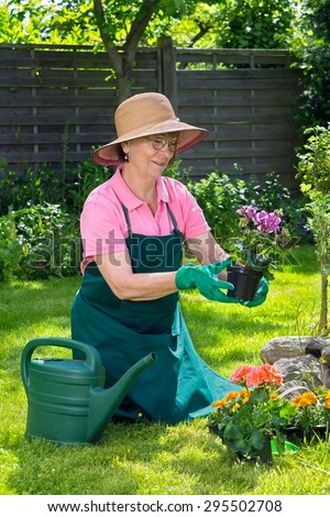 Middle-aged woman in a straw sunhat and glasses admiring a potted plant as she kneels on the green spring lawn in her garden preparing to transplant the flowers into a flowerbed