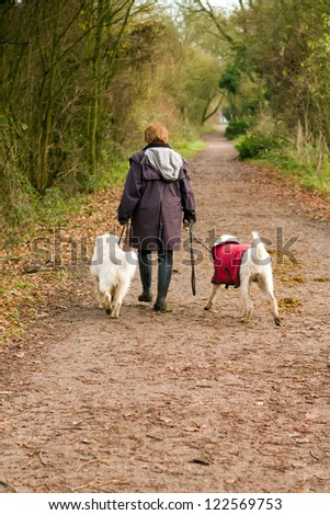 middle aged woman walks her dogs in the countryside