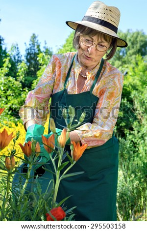Middle-aged woman wearing a straw sunhat, apron and gloves watering her flowers in a lush green garden with a watering can, close up three quarter view - stock photo