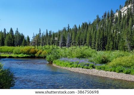 Middle Fork of San Joaquin River at Devils Postpile National Monument.  Destination California - stock photo