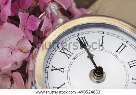 midnight on an old clock  with pink flowers petals