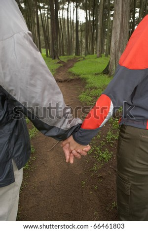 Midsection of couple holding hands in forest