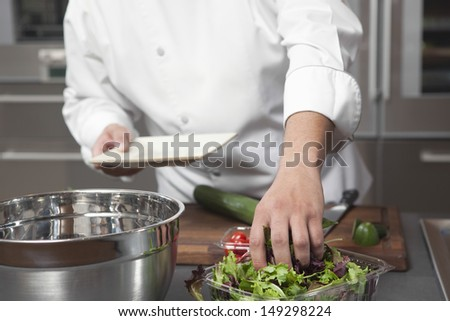 Midsection of male chef preparing salad in commercial kitchen - stock photo