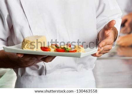 Midsection of male chef presenting dish