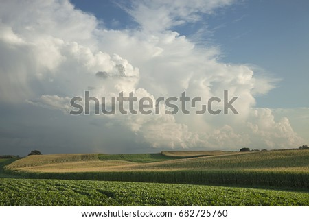 Midwest corn and soybean fields below dramatic clouds