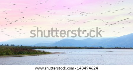 Migratory birds flying at sunset over a valley and mountains - Panoramic view of Hula lake valley national reserve (Israel) - stock photo