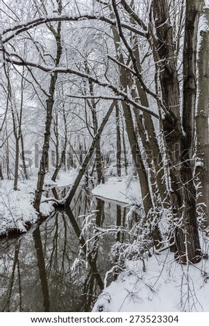 Milford Brook after fresh snow in Manalapan New Jersey. - stock photo