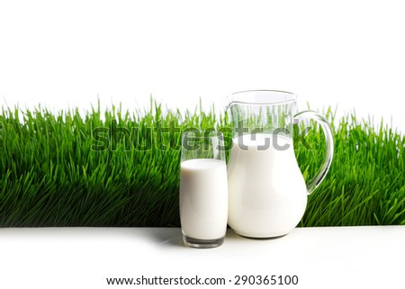 Milk jug and glass on fresh green grass field background - stock photo