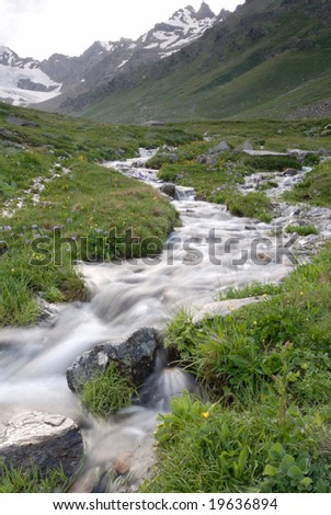 milky streams by water meadow in highland of the Caucasus