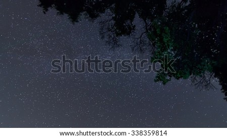 Milky Way galaxy Night sky, Starry night with tree The summer Milky Way