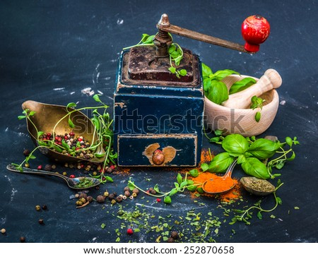 Mill for spices on a dark background - stock photo