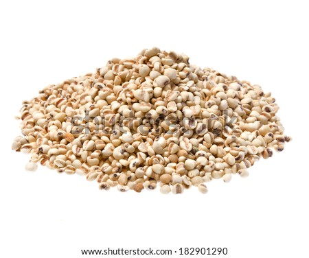 millet isolated on white background