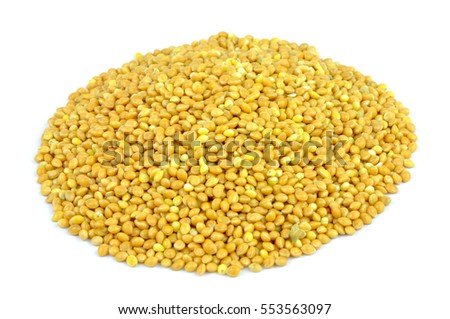 Millet isolated on white background .