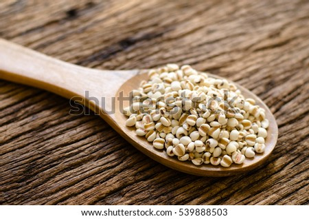 millet on wood spoon on old wood background for cooking