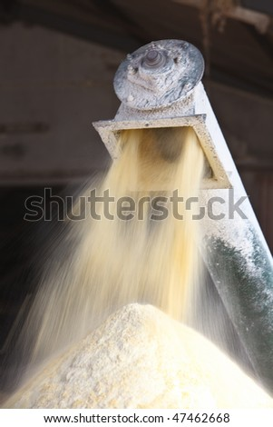 Milling corn for cattle feed inside a large shed - stock photo