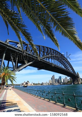 MILSON'S POINT SYDNEY, AUSTRALIA - OCTOBER 6, 2013:  View of Sydney Harbour Bridge and in the distance, Sydney City and the Sydney Opera House from under beautiful date palms. Focus to Bridge. - stock photo