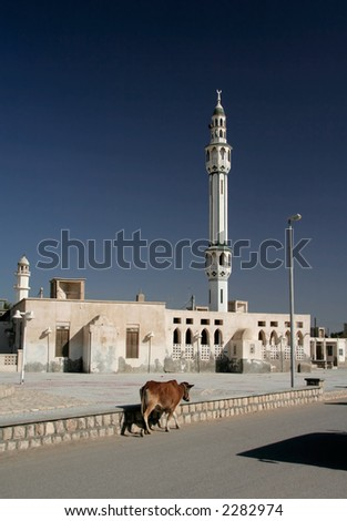 Minaret in the village of Qeshm Island in the Persian Gulf, Iran. Cow walking in the foreground. - stock photo
