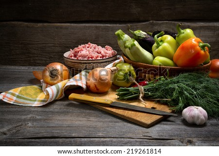 Minced meat and vegetables: zucchini, eggplant, onion, fennel, garlic, chili and bell pepper - stock photo